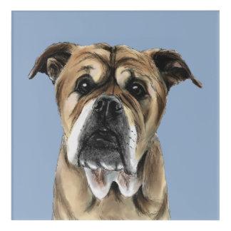 Cute English Bulldog Drawing Acrylic Wall Art