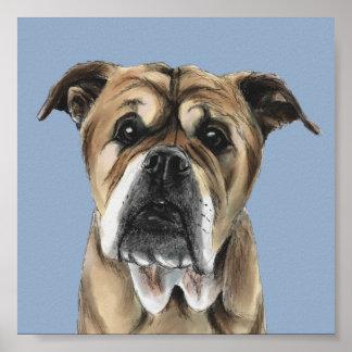Cute English Bulldog Drawing Poster