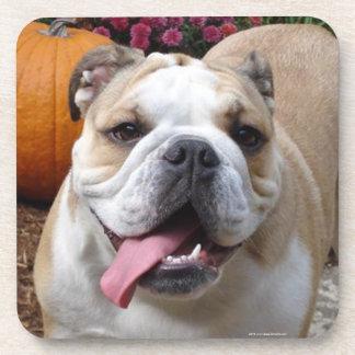 Cute English Bulldog Drink Coaster Set Coasters