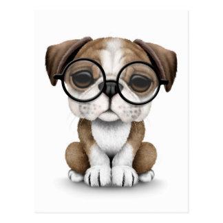 Cute English Bulldog Puppy Wearing Glasses White Postcard