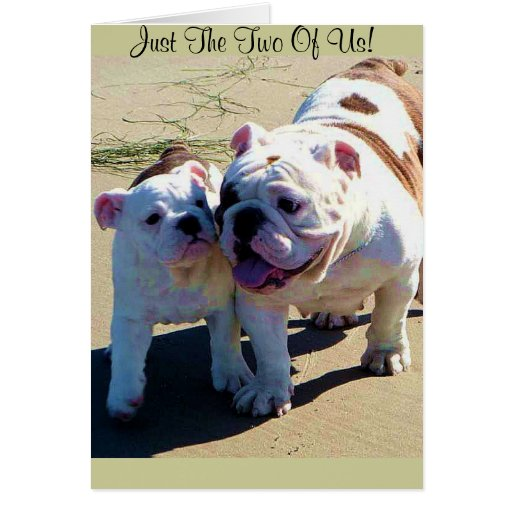 Cute English Bulldogs Just The Two Of Us! Greeting Card