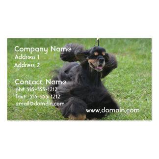 Cute English Cocker Spaniel Business Card