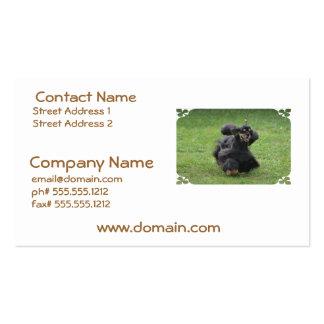 Cute English Cocker Spaniel Business Card Template