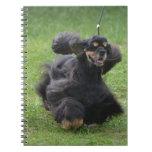 Cute English Cocker Spaniel Spiral Notebook