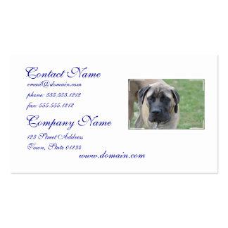 Cute English Mastiff Business Card Templates