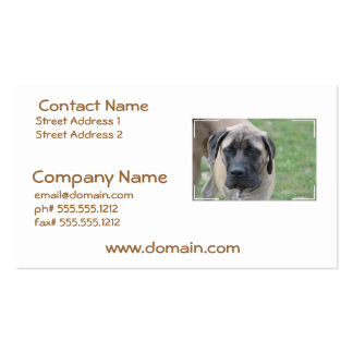 Cute English Mastiff Business Cards