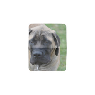 Cute English Mastiff Business Card Holder