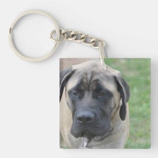 Cute English Mastiff Acrylic Keychain