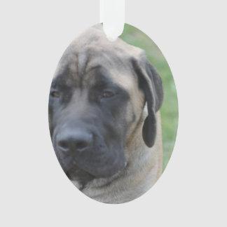 Cute English Mastiff Ornament