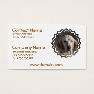 Cute English Setter Business Card