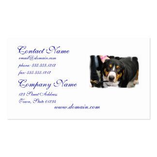 Cute Entlebucher Mountain Dog Business Cards