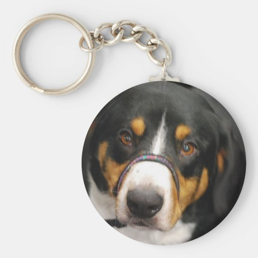 Cute Entlebucher Mountain Dog Keychain
