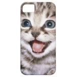 Cute Excited Kitten IPhone Case iPhone 5 Cases