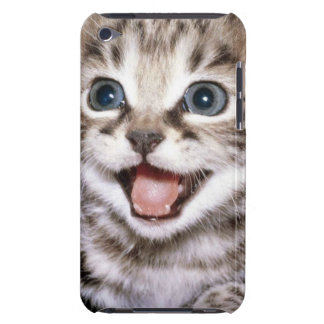 Cute Excited Tabby Kitten iPod Case-Mate Case