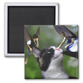 Cute Fairies and Cat Square Magnet