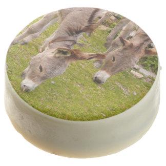 Cute Farm Animals Pets Mule Donkey Chocolate Dipped Oreo