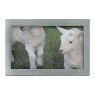 Cute Farm Ranch Baby Twins Sheep Lamb Rectangular Belt Buckles