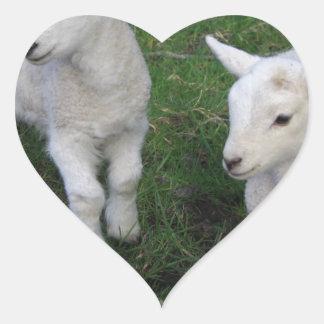 Cute Farm Ranch Baby Twins Sheep Lamb Heart Sticker