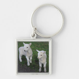Cute Farm Ranch Baby Twins Sheep Lamb Keychain