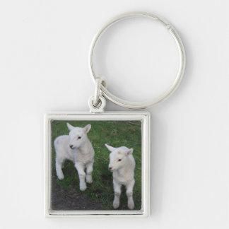 Cute Farm Ranch Baby Twins Sheep Lamb Key Chain