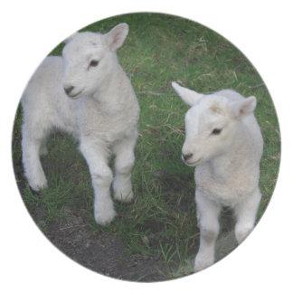 Cute Farm Ranch Baby Twins Sheep Lamb Plate
