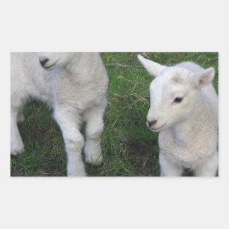 Cute Farm Ranch Baby Twins Sheep Lamb Rectangular Stickers