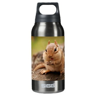 Cute Fat and Fluffy Chipmunk Snacking Insulated Water Bottle