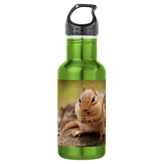 Cute Fat and Fluffy Chipmunk Snacking Water Bottle