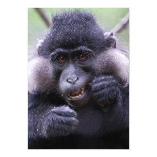 Cute fauna card