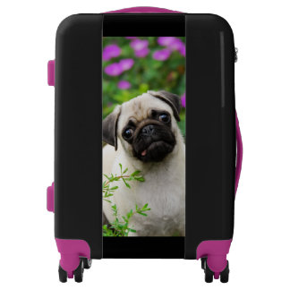 Cute Fawn Colored Pug Puppy Dog Photo - Suitcase Luggage