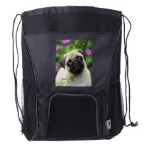 Cute Fawn Colored Pug Puppy Dog Portrait - bag