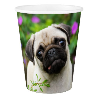 Cute Fawn Colored Pug Puppy Dog Portrait, Party Paper Cup