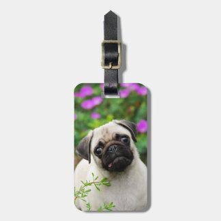 Cute fawn pug puppy bag tag