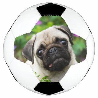 Cute fawn pug puppy soccer ball