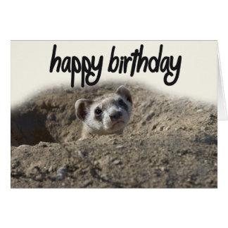 cute Ferret Happy Birthday Card