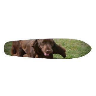 Cute Field Spaniel Skateboard Decks