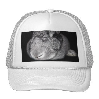 Cute Flemish Giant Nose Close-Up Trucker Hats