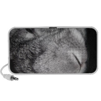 Cute Flemish Giant Nose Close-Up Speakers