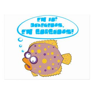 Cute flounder fish postcards
