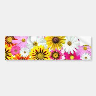 Cute Flower Collage Bumper Sticker