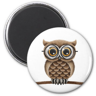 Cute Fluffy Brown Owl with Reading Glasses, White Magnet