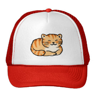 cute fluffy ginger and white cat trucker hat