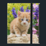"Cute Fluffy Ginger Baby Cat Kitten Flowers Photo - iPad Folio Case<br><div class=""desc"">A lovely kitten on a rock in a flowery garden. A cute young redtabby baby cat with wonderful blue eyes, photo taken by Katho Menden. This durable hard cover Powis iCase 2/3/4 is a gift idea for cat and pet lovers. http://www.zazzle.com/kathom_photo - You can add your own text by pressing...</div>"
