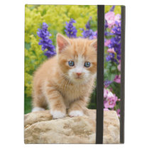 Cute Fluffy Ginger Cat Kitten in Flowers Pet Photo iPad Air Cover