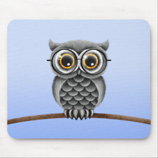 Cute Fluffy Gray Owl with Glasses, Light Blue Mouse Pad