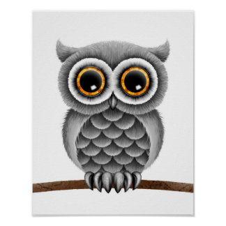 Cute Fluffy Grey Owl on a Branch, White Background Poster