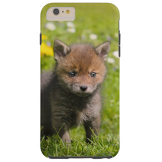 Cute Fluffy Red Fox Cub Baby Animal Cell Phonecase Tough iPhone 6 Plus Case