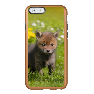 Cute Fluffy Red Fox Cub Baby Animal Cellphonecover Incipio Feather Shine iPhone 6 Case