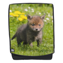 Cute Fluffy Red Fox Cub Wild Baby Animal  Boldface Backpack