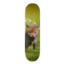 Cute Fluffy Red Fox Cub Wild Baby Animal Photo - Skateboard Deck